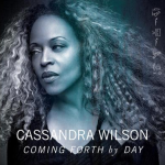 What a Little Moonlight Can – Cassandra Wilson